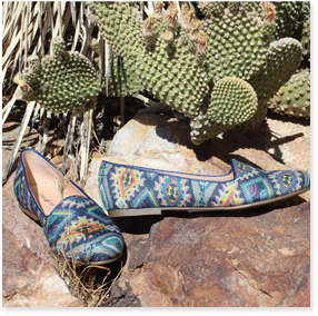 A pair of flats sitting on a rock next to cactus.